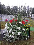 Cemetery Box