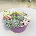 Vintage Metal Succulent Planter
