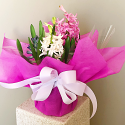 Heavenly Hyacinths